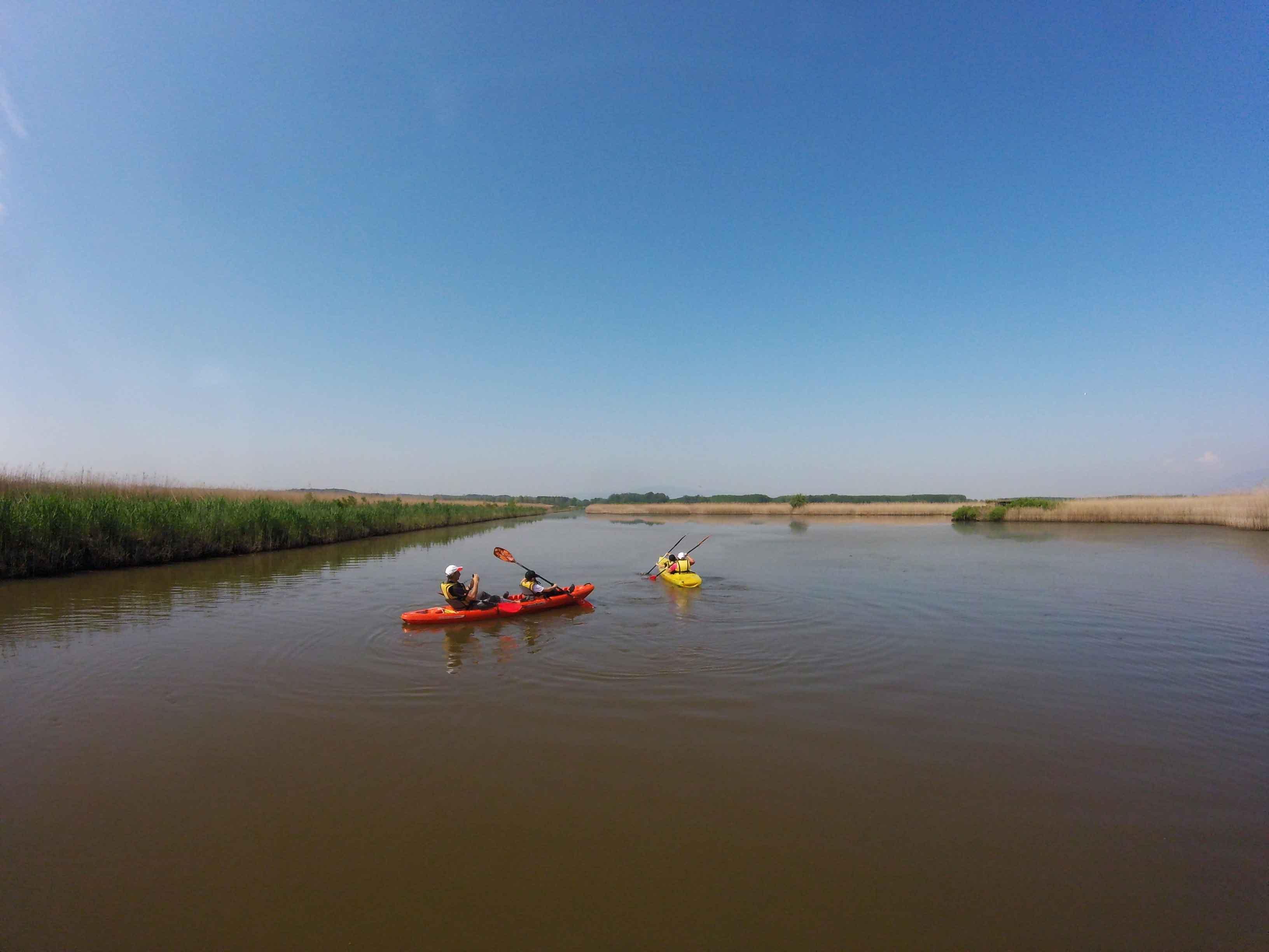 Kayak nel Padule di Fucecchio