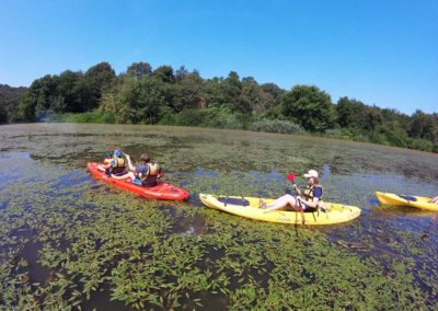 Kayak in the Bandella Nature Reserve and Valle dell'Inferno