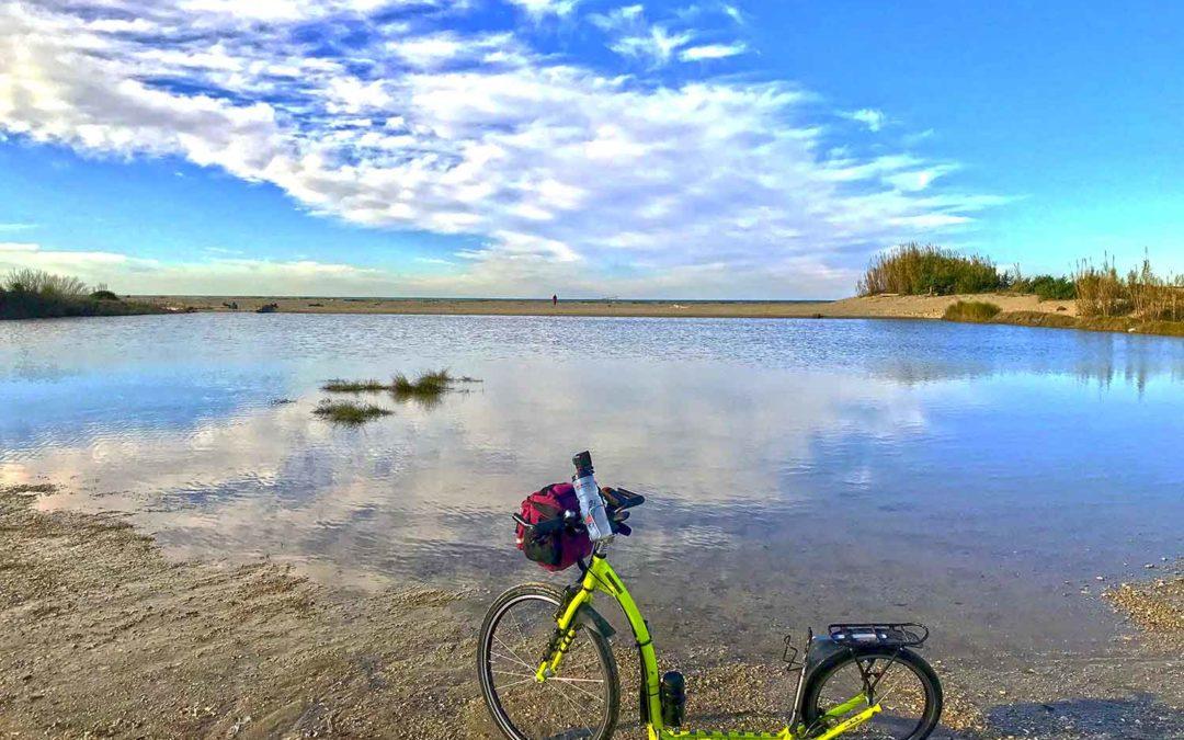 Footbike nel parco di Migliarino – San Rossore